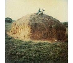 Andrei Tarkovsky Polaroid