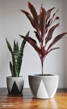 A nova moda é ter pelo menos um vaso de concreto. É um mais lindo que o outro, tem vários modelos super diferentes, venha conferir alguns deles.