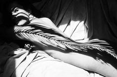 """Il fotografo spagnolo Emilio Jiménez crea delle splendide composizioni visive con la sua macchina fotografica. Nella sua serie """"Anatomía natural, salvaje"""", si concentra sulle ombre della natura proiettate sul corpo nudo femminile. Jiménez gioca con la luce e l'ombra, cercando l'angolo perfetto per coprire le donne attraverso ombre di foglie che giocano con il loro corpo. I risultati sono sorprendenti."""