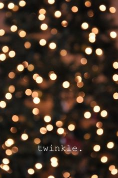 I love twinkle lights, small pretty twinkling lights. ♥