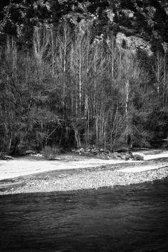 bwstock.photography - photo | free download black and white photos  //  #riverside Black White Photos, Black And White, Free Black, Beach, Water, Photography, Outdoor, Gripe Water, Outdoors