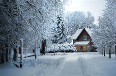 "Rietavas, Lithuania - ""Winter park"" by Mantas Viržintas, via 500px"