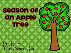 FREEBIE! Apple Tree life cycles! Worksheet and Anchor Chart