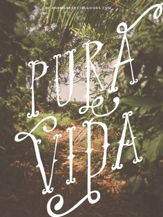 """Wise Words Pura Vida is a characteristic Costa Rican phrase. It literally means pure life, however, the real meaning is closer to """"plenty of life"""", """"full of life"""" Words Quotes, Wise Words, Sayings, Jungle Art, Spanish Quotes, Drawing, Decir No, Illustration, Lush"""