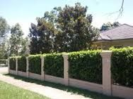 Image result for brick walls victorian hedge