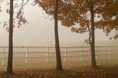 Carousel Park, New Castle County, Delaware