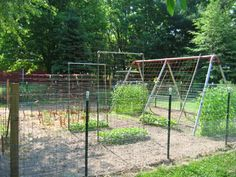 9 Best Vegetable Garden Under Swingset Images Vegetables Garden
