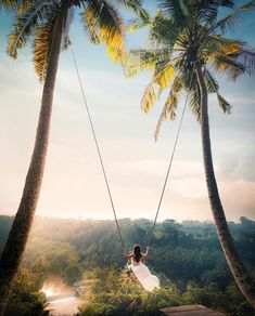 Bali swing and tours Swing Photography, Travel Photography, Adventure Awaits, Adventure Travel, Bali Girls, Bali Travel, Foto Pose, Pretty Pictures, Travel Pictures