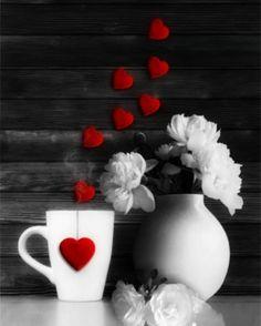 Amour ♥ Passion