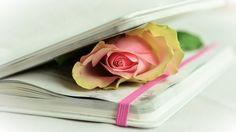 Frase (71) Los poemas que han salido de mi corazón. Están esperando a que los leas y formar parte del...