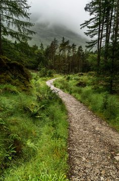 Trail in Scotland by Mark Earlam