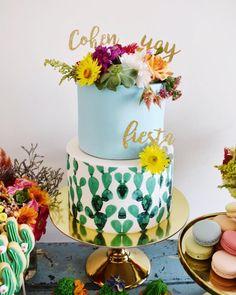 Cohan's Fiesta First Birthday