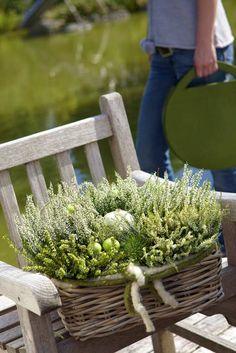 Balcony Flower Box, Flower Boxes, Small Garden Design, Autumn Photography, Autumn Garden, Fall Flowers, Garden Planters, Autumn Inspiration, Container Gardening
