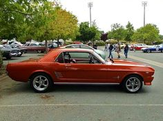 Nice 66 Mustang Coupe   I like the color!