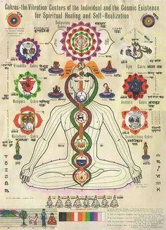 Divine Spark: The Chakras.