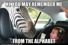 Ha ha. Yes, she remembers.