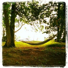 Take a break from the activities for some hammock lounging! #TPbucketlist