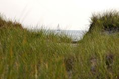 View on Nantucket Sound by Chris Seufert, via Flickr