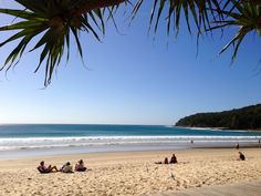 bays hike across national parks cliffs forests canoe its noosa australia beach official has been named one of the best es in Noosa Australia, Australia Beach, Australia Travel, Coast Hotels, Learn To Surf, Holiday Apartments, Destin Beach, Sunshine Coast, Outdoor Pool