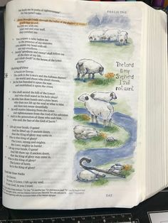 Creations by Dot J. Bible Notes, My Bible, Bible Scriptures, Art Journaling, Bible Study Journal, Bible Drawing, Bible Doodling, Scripture Art, Bible Art
