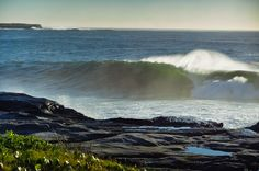 Tubular morning glow off Sydney from Liquid Visions ...  one for Michael Peterson.
