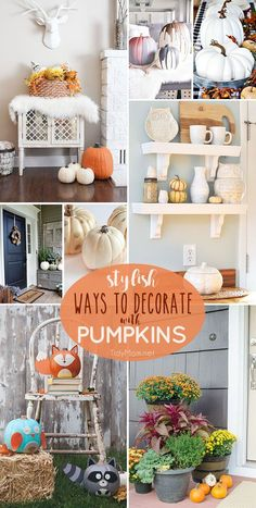 Get your home ready for fall with these 8 Stylish Ways to Decorate with…