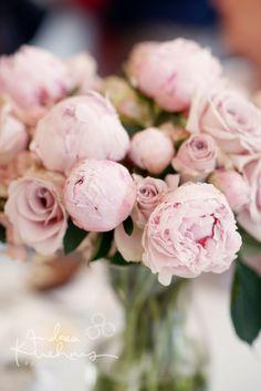 Gorgeous parlour flowers