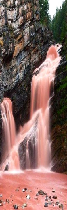 The Cameron Falls located inside the Waterton Lakes National Park in Alberta, Canada, turn red when heavy rains occur. Argolite, the red-colored sediment, causes the water to turn red.