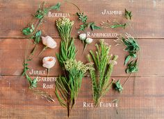 "1 - DIY: Spring Flower Crown ~ flowers needed: • ""Juliet"" Garden Roses (5) • Berzillia Berries (a few stems) • Jasmine (1 stem) • Ranunculus (10) • Rice Flower (2 stems)  hard goods: • 4′ 3/8″ Frech Double Satin Ribbon • Green Florist tape • 16 gauge straight wire • Ribbon Shears • Bonsai Shears"
