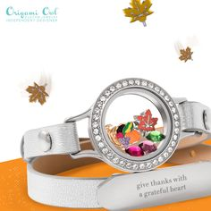 Origami Owl jewelry is so FUN. Change the charms, locket face etc to fit your mood and the season! Just click on the pic for our latest offerings.