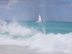 Eagle Beach, Aruba Dec 2012