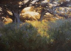 Late Sun and Cypress by Laurie Kersey Oil ~ 30 x 40