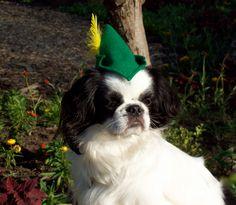 Dog Hat, Peter Pan, Small. $6.50, via Etsy.