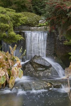The gardens @kilvercourt are home to lots of mini waterfalls and a large millpond. Beautiful in the sunshine