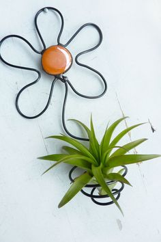Air Plant Holder Flower Wall Hanging with Orange Glass by glassetc