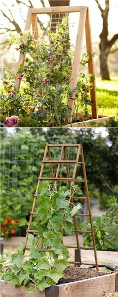 Brilliant and Effective Raised Garden Beds that are Easy to Build affordable https://pistoncars.com/brilliant-effective-raised-garden-beds-easy-build-14337