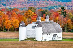 D.H. Day Farm Autumn (Northern Michigan) | Photo by Aubrieta V. Hope