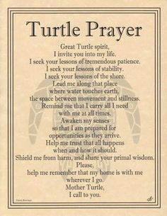 "This beautiful parchment poster mingles the tribal artwork of Eliot Alexander with the poetic prayer of Travis Bowman to provide you with a prayer to the Great Turtle Spirit. 8 12"" x 11"""