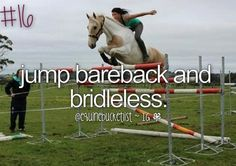 i have never jumped with a saddle before so i've partially accomplished this ! :) :)