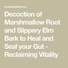 Decoction of Marshmallow Root and Slippery Elm Bark to Heal and Seal your Gut - Reclaiming Vitality