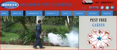 The Pest Control Service from Mourier protects restaurants at risk from attack by these key pests. Best Pest Control, Pest Control Services, Scary Animals, Protecting Your Home, Delhi Ncr, How To Remove, Food Industry, Restaurants, Range