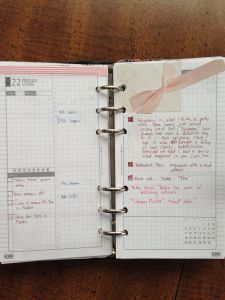 Week 47 After Shot  Pink Bow  #filofax #daytimer #franklincovey #diyfish #lifemapping #planner #organization
