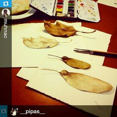 Thank you so much!   #Repost from @muhnac with @repostapp   —  #Repost from @__pipas__ with @repostapp --- Let's draw and paint nature!! This is a snapshot from the course of scientific and specimen illustration at #MUHNAC #ulisboa #UniversidadedeLisboa
