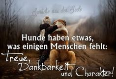 Hunde haben etwas, was einigen Menschen fehlt: Treue, Dankbarkeit und Charakter! Dogs have something that some people lack: loyalty, gratitude and character! True Friends, Best Friends, True Words, I Love Dogs, Animals And Pets, Quotations, Life Quotes, Inspirational Quotes, Wisdom