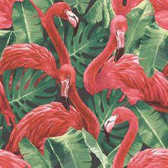 Illustration of Pink flamingo, monstera leafs, palm leaf. Vector vector art, clipart and stock vectors. Tier Wallpaper, Wallpaper Direct, Animal Wallpaper, Wallpaper Roll, White Wallpaper, Pattern Wallpaper, Pink Flamingo Wallpaper, Tropical Wallpaper, Flamingo Rosa