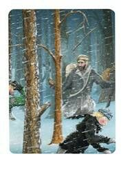 Snowland Tarot: 9