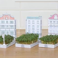 Matchbox House With Cress Garden, MatchCarden, By Another Studio