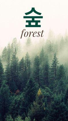 Forest in Korean