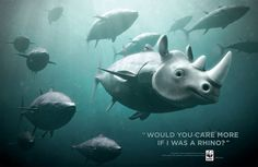 Would you care more if I was a rhino? World Wildlife Foundation is attempting to save the extinction of BLUEFIN TUNA.