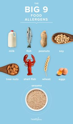 Allergy to Sesame Seeds: Health Dangers Sesame Allergy, Tree Nuts, Food Allergies, Health And Beauty, Seeds, Fish, Recipes, Printables, Board